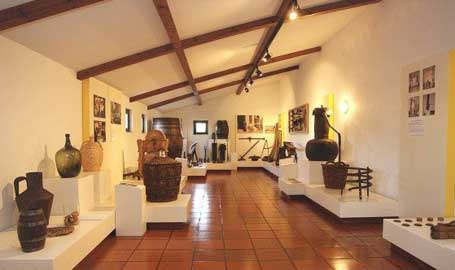 imagem Museu do Vinho